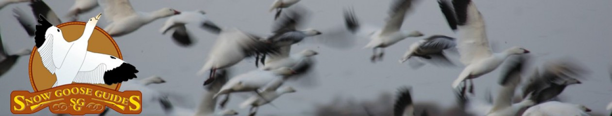 Falling Skies Guide Service & Snow Goose Chasers – Availability All Season – All  Inclusive – Lodging Available – 855-473-2875